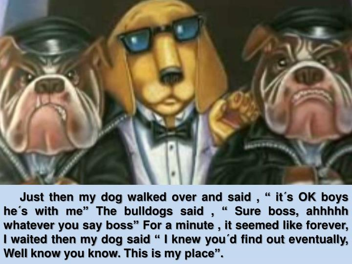 """Just then my dog walked over and said , """" it´s OK boys he´s with me"""" The bulldogs said , """" S..."""