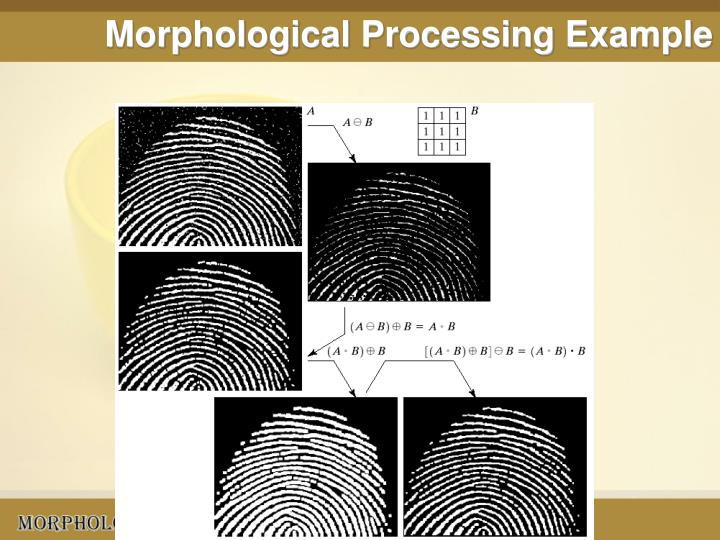 Morphological Processing Example