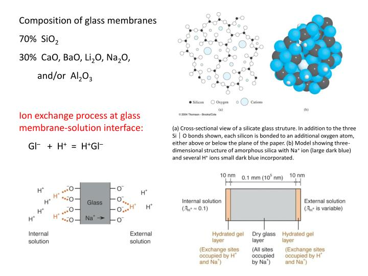 Composition of glass membranes
