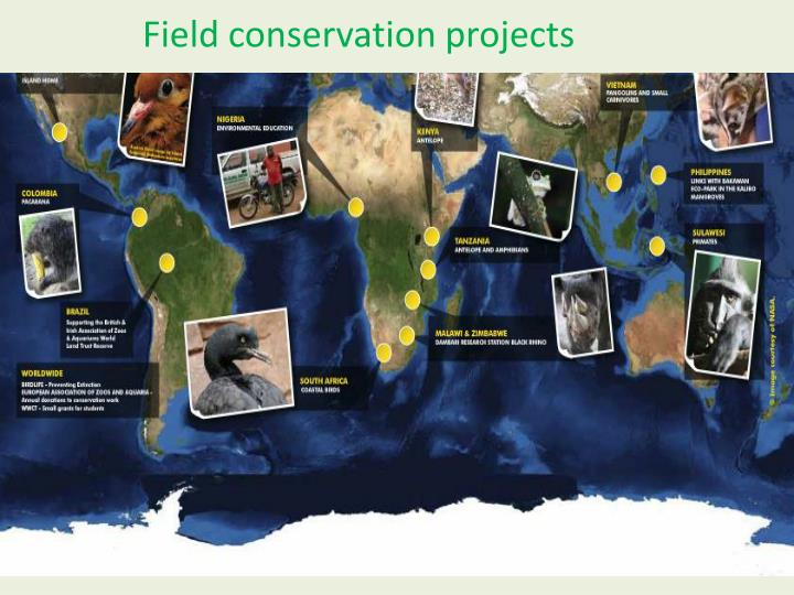 Field conservation projects