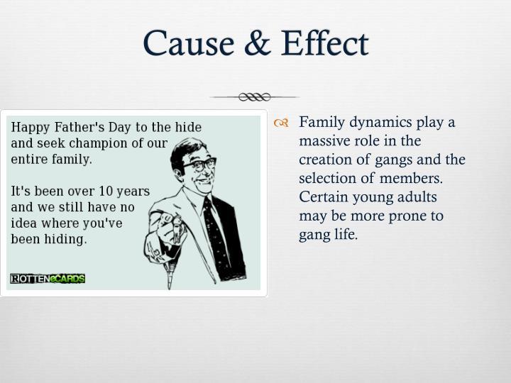 The Effects Of Gangs Pp X Meghan Mc Ghee |Gang Effect