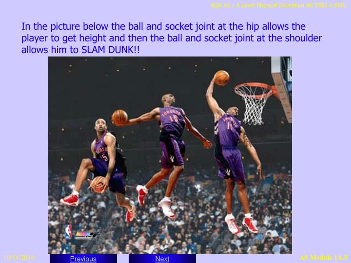 In the picture below the ball and socket joint at the hip allows the player to get height and then the ball and socket joint at the shoulder allows him to SLAM DUNK!!