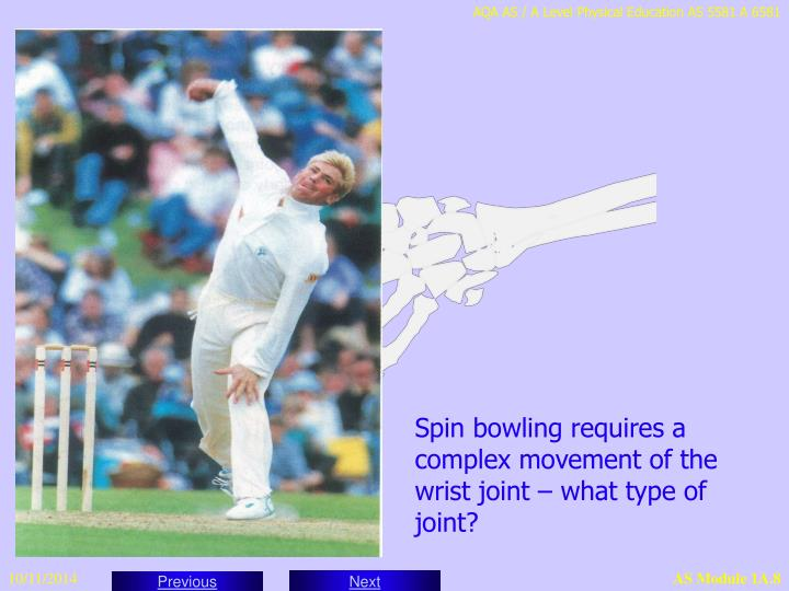 Spin bowling requires a complex movement of the wrist joint – what type of joint?