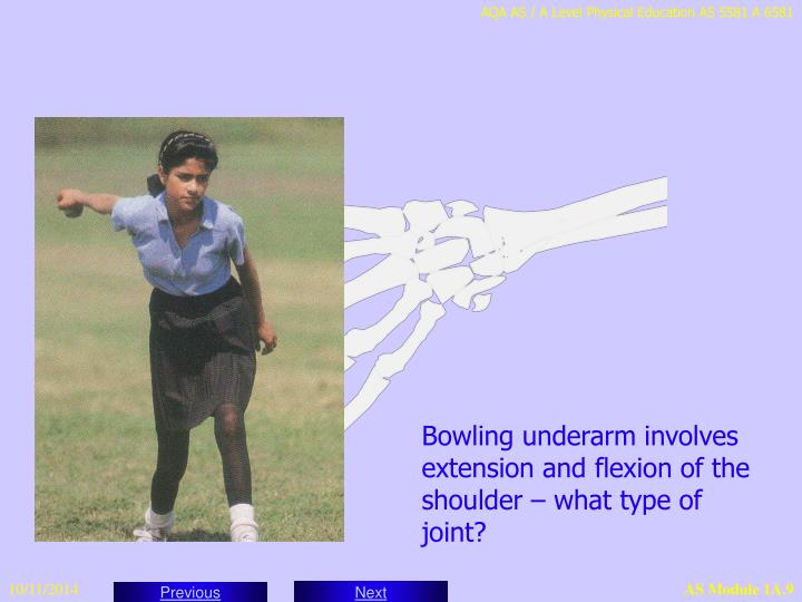 Bowling underarm involves extension and flexion of the shoulder – what type of joint?