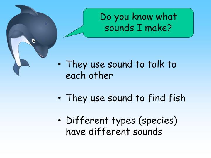 Do you know what sounds I make?