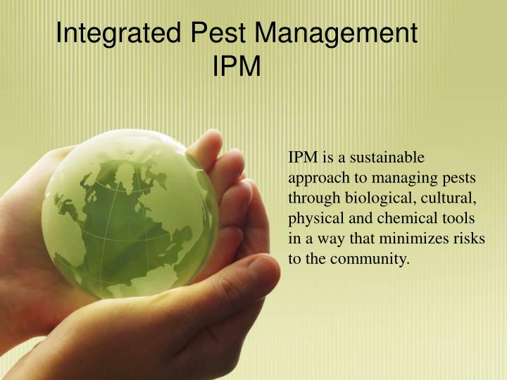 integrated pest management ipm n.