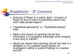 roadblocks ip concerns