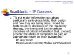 roadblocks ip concerns1