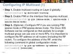 configuring ip multicast 1