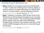 configuring ip multicast 3