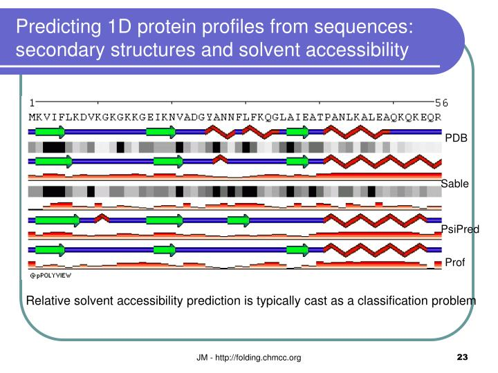Predicting 1D protein profiles from sequences: secondary structures and solvent accessibility