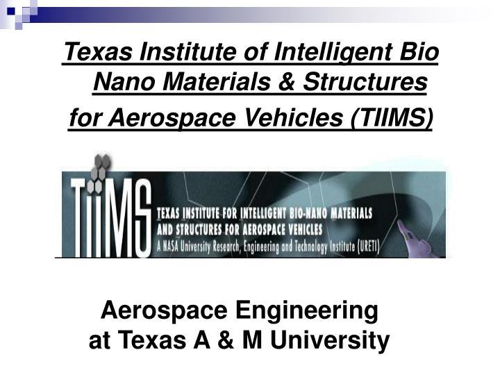 Texas Institute of Intelligent Bio Nano Materials & Structures