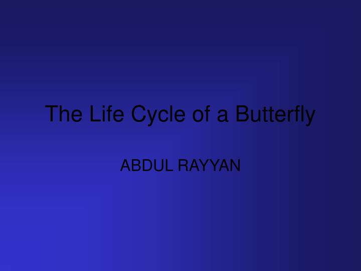 the life cycle of a butterfly n.