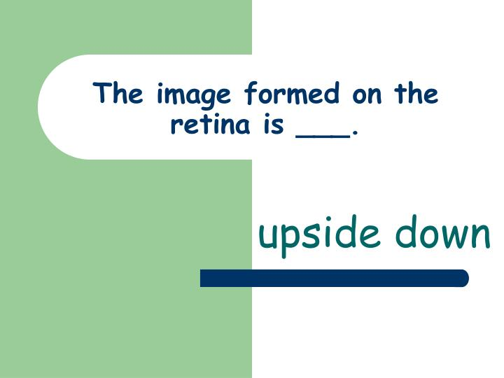 The image formed on the retina is ___.