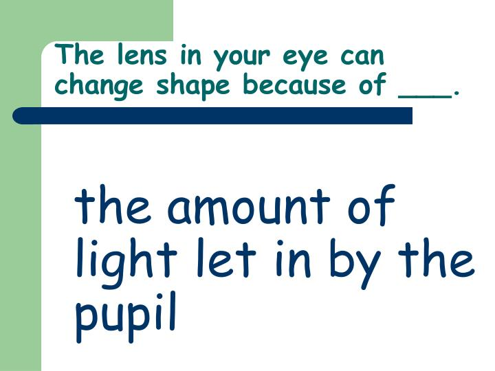 The lens in your eye can change shape because of ___.