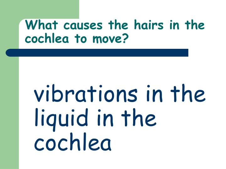 What causes the hairs in the cochlea to move?