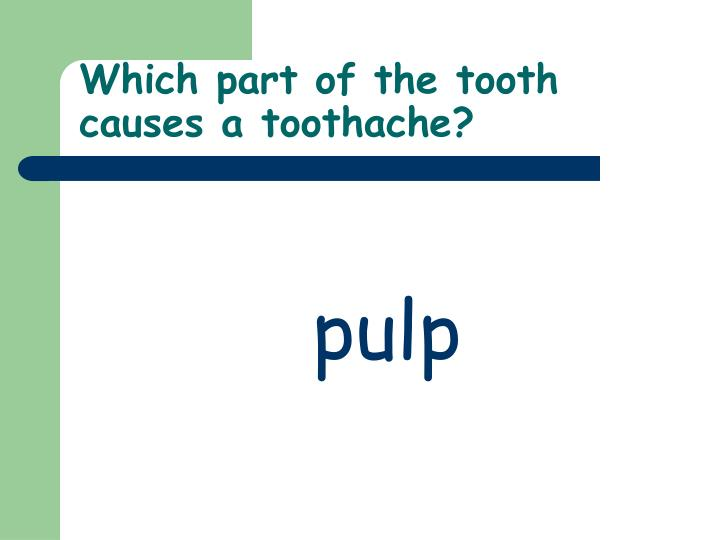Which part of the tooth causes a toothache?