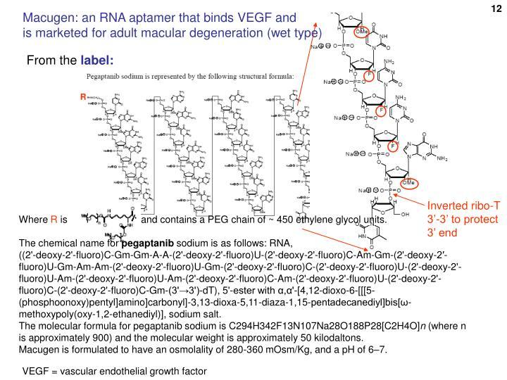 Macugen: an RNA aptamer that binds VEGF and