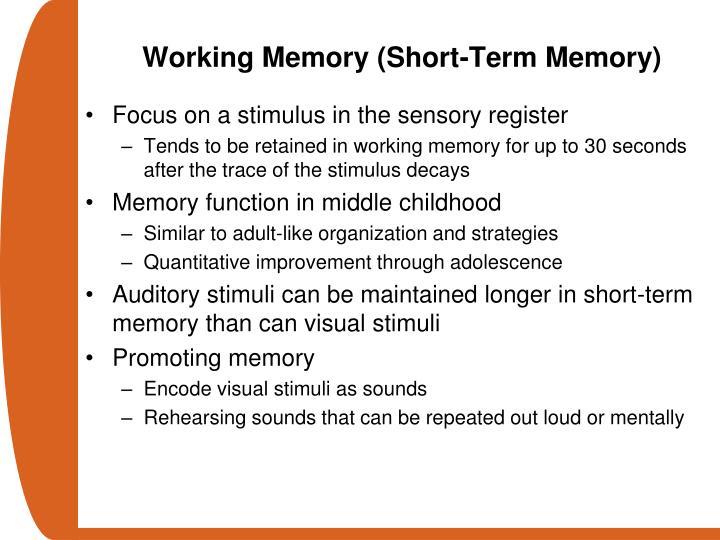 Working Memory (Short-Term Memory)