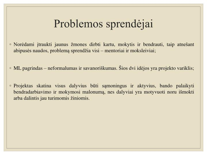 Problemos sprendėjai