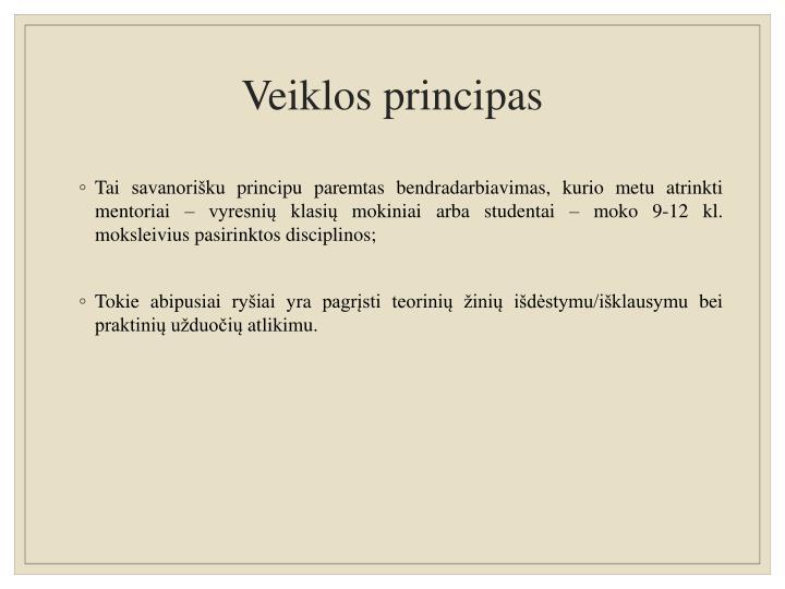 Veiklos principas
