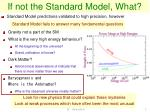 if not the standard model what