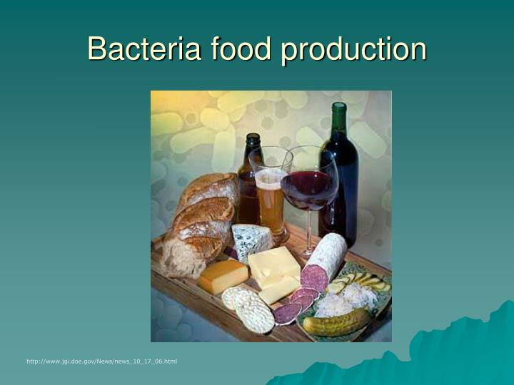 Bacteria food production