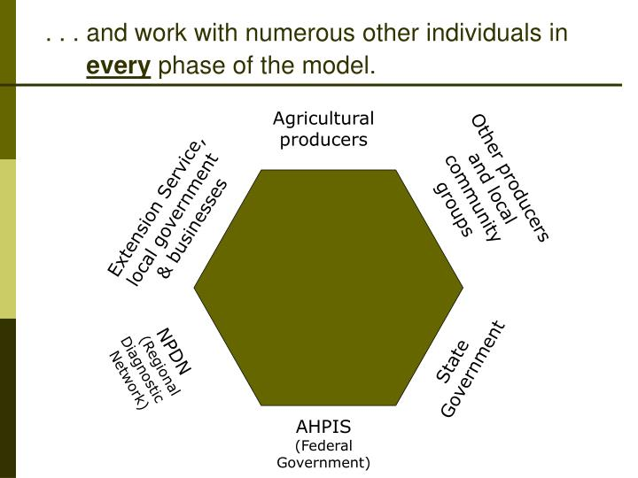 And work with numerous other individuals in every phase of the model