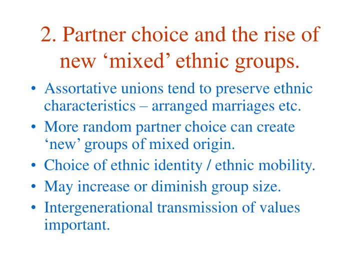 2. Partner choice and the rise of new 'mixed' ethnic groups.