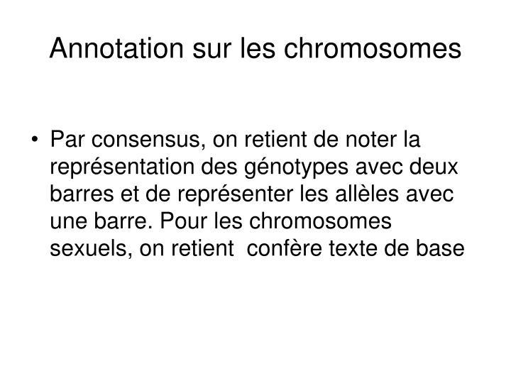 Annotation sur les chromosomes