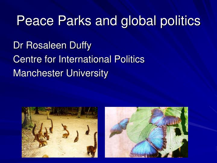 Peace parks and global politics