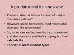 a predator and its landscape