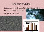 cougars and deer1