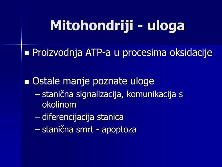 Mitohondriji - uloga