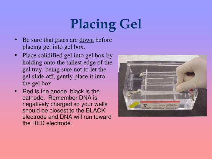 Placing Gel