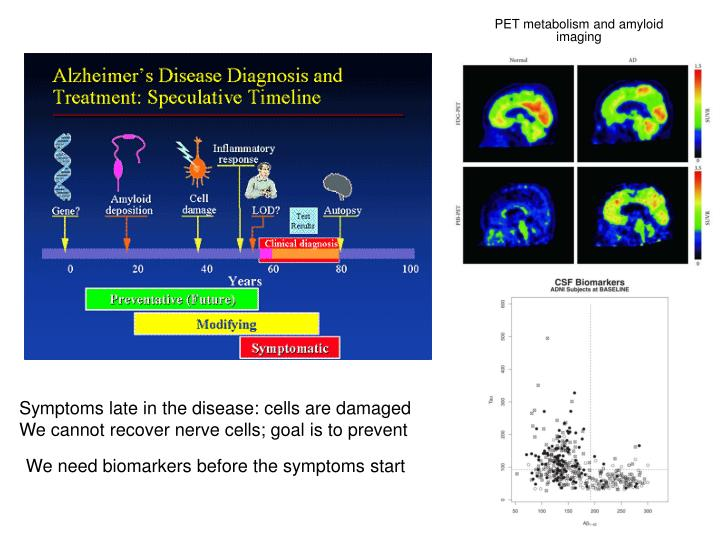 PET metabolism and amyloid imaging