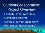 student collaboration project overview
