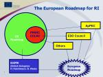 the european roadmap for ri
