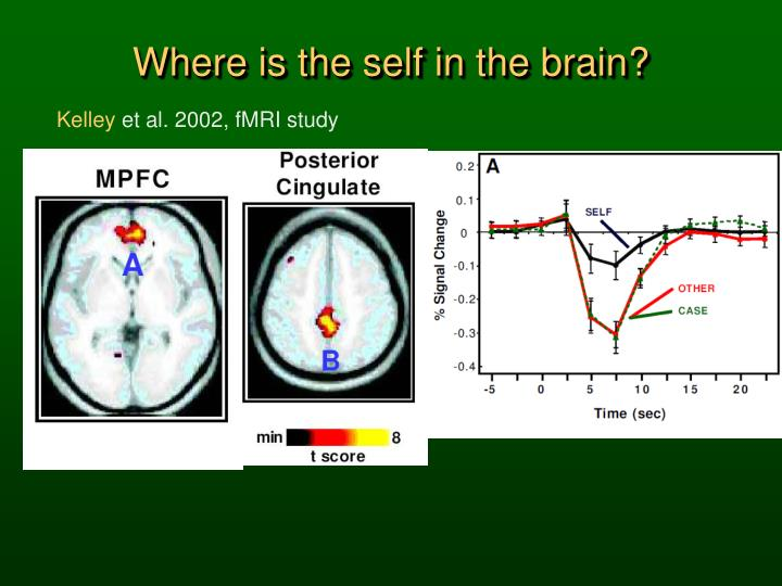 Where is the self in the brain?