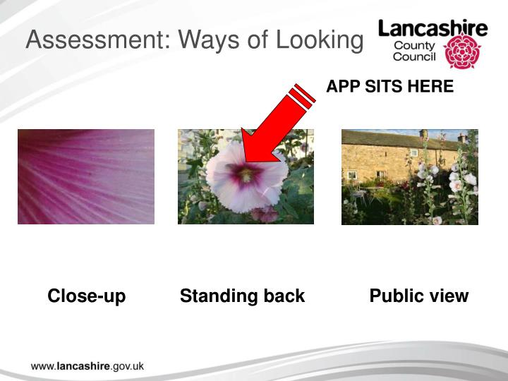 Assessment: Ways of Looking