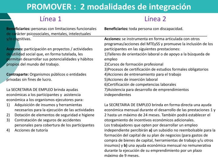 PROMOVER :  2 modalidades de integración