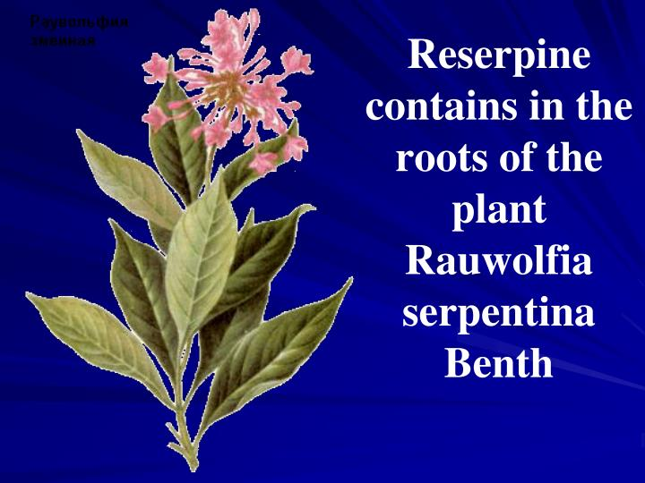 Reserpine contains in the roots of the plant