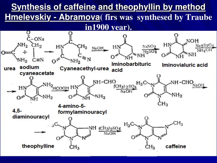 Synthesis of caffeine and theophyllin by method Hmelevskiy - Abramova