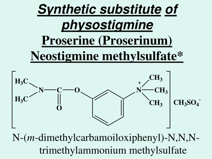 Synthetic substitute