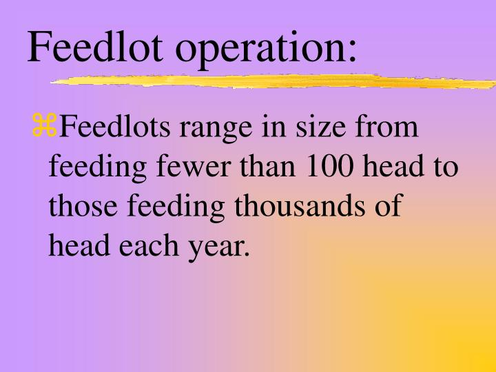 Feedlot operation: