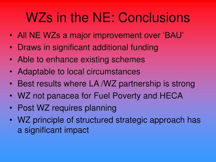 WZs in the NE: Conclusions