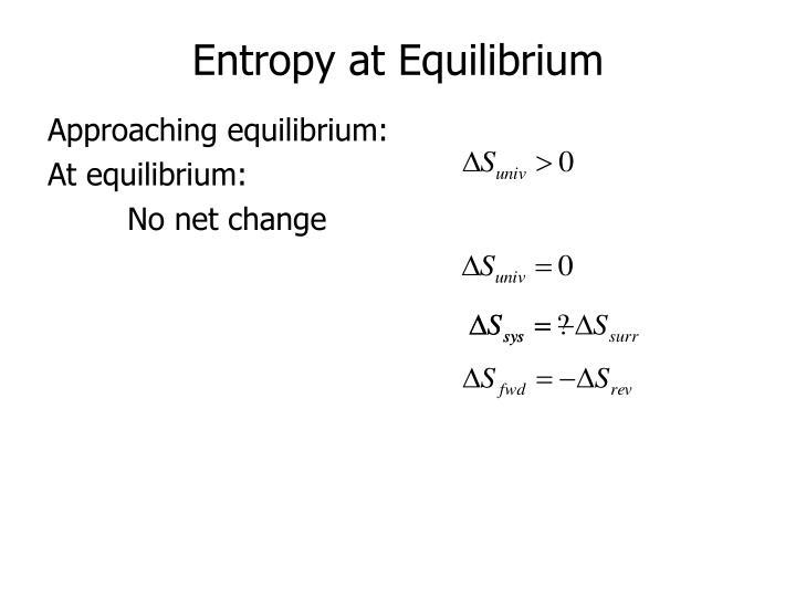Entropy at Equilibrium