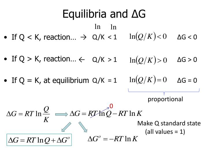 Equilibria and ∆G