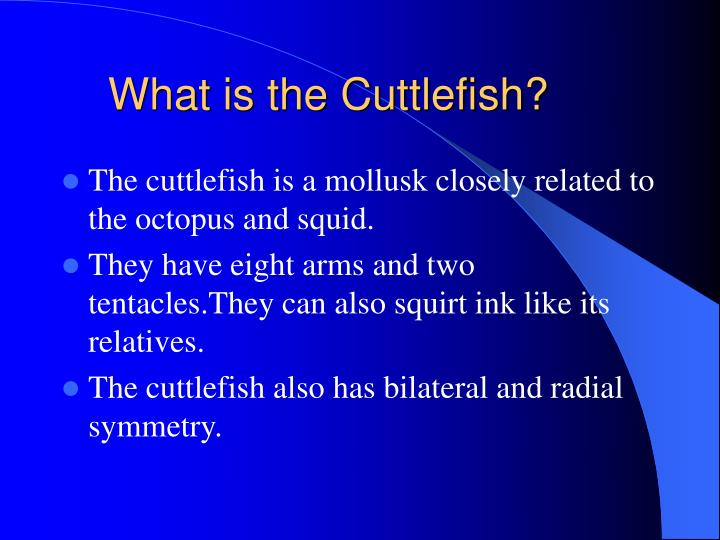 What is the cuttlefish