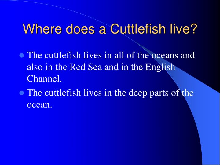 Where does a Cuttlefish live?
